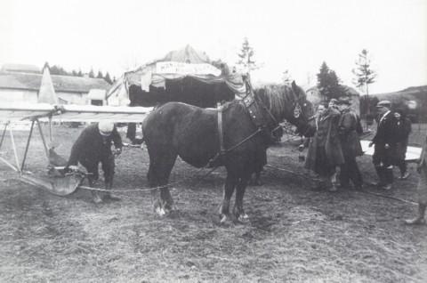 Zweefvliegkamp te Hébronval. Paarden werden gebruikt om de zwevers terug naar de top van de heuvel te slepen. Een mooie bijverdienste voor de boer!